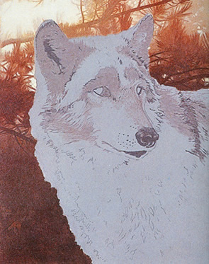 Wildlife Wolf Acrylic Painting Tutorial