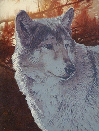 Acrylic Painting Lesson Wolf