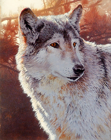 Wolf Acrylic Painting Tutorial Picture