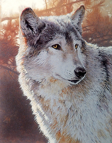 Wildlife Acrylic Painting Techniques