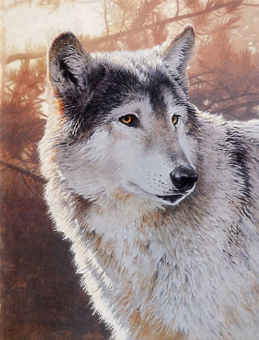 Wildlife Wolf Acrylic Painting Techniques