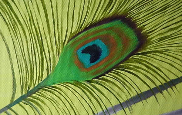 Peacock Painting Demonstration in Oils