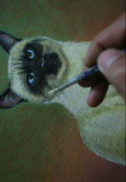 cat painting step 9