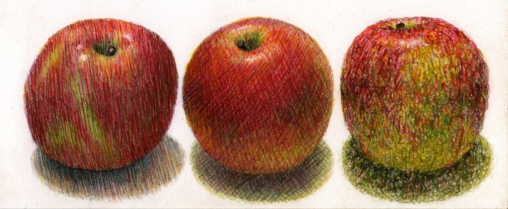 Colored Pencil Techniques - hatching and Cross Hatching and Textures