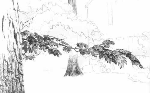 How To Draw Leaves On A Tree Pen And Ink Drawing Tutorial
