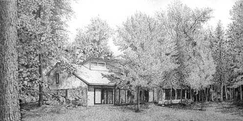 Drawing Trees with Pen and Ink Image 1