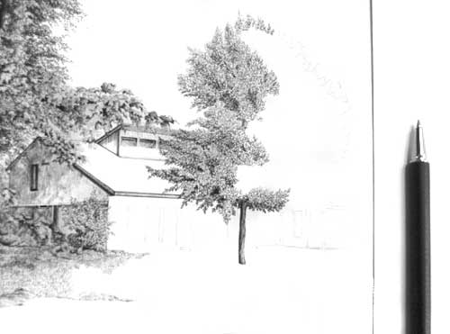 Drawing Trees with Pen and Ink by Vincent Whitehead