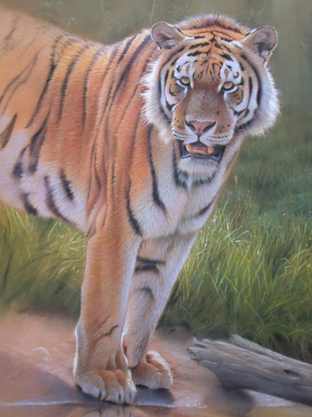 Tiger Painting Tutorial Image 10