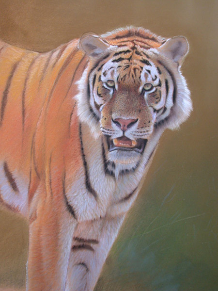 wildlife painting techniques 5