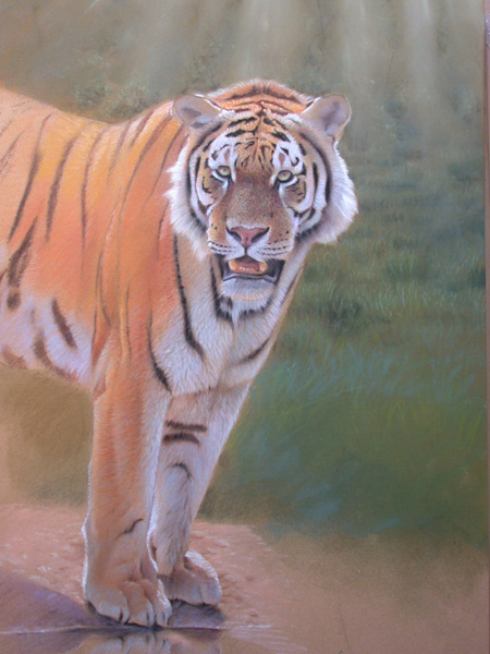 wildlife painting tutorial 6