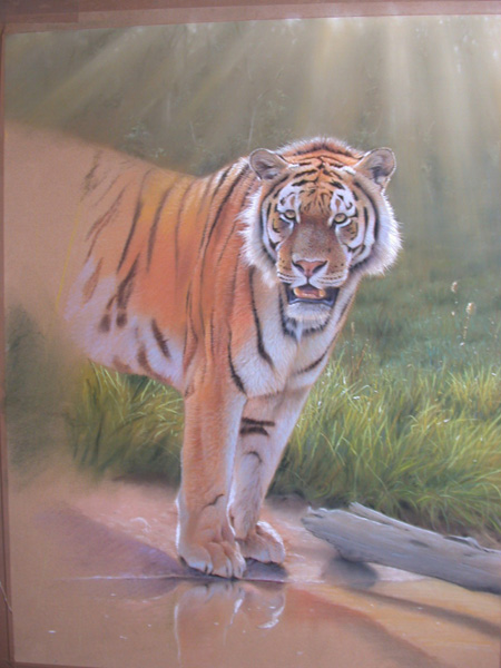 wildlife pastel demonstration 8