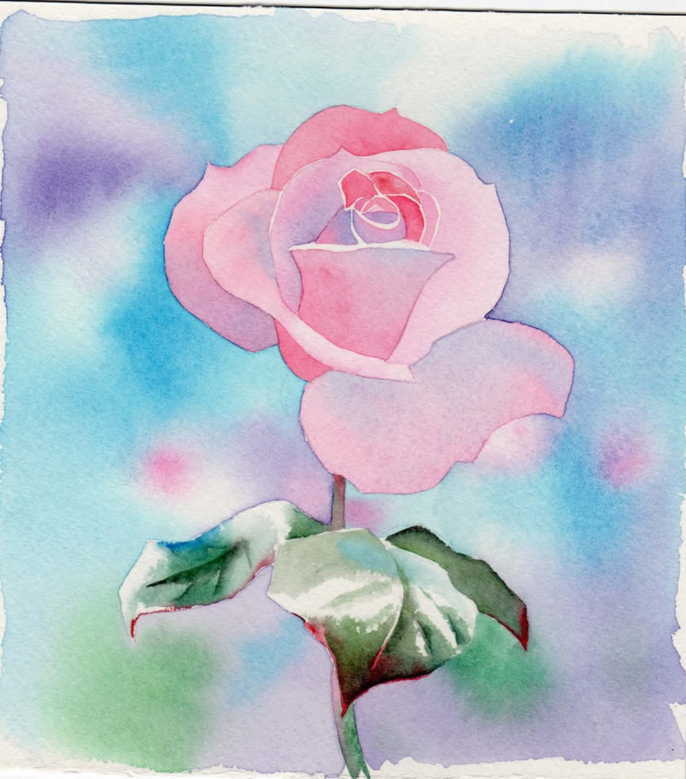 Watercolour painting demonstration perfectly pink rose the mightylinksfo