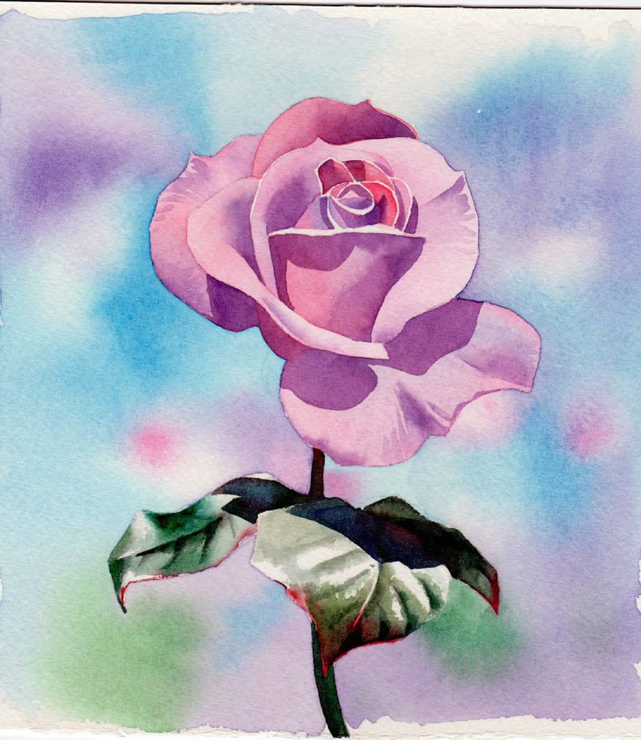Watercolour Painting Demonstration Perfectly Pink Rose