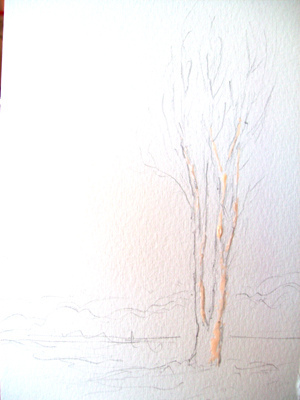 watercolor tree techniques 2
