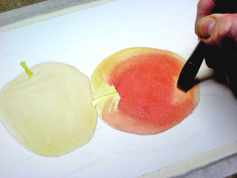 watercolor tutorial apples 5