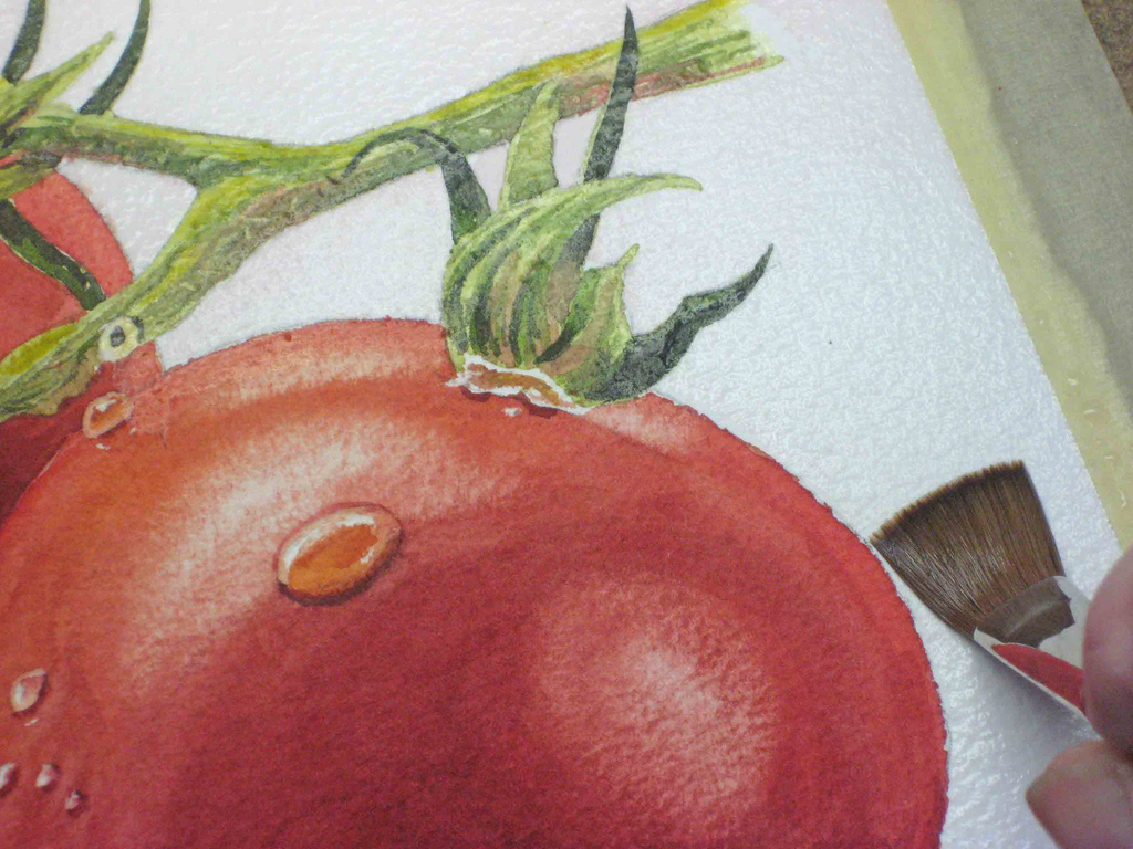 watercolor step 17