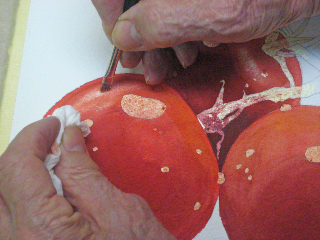 how to paint tomatoes in watercolor