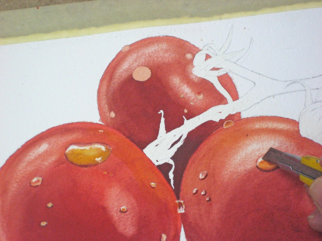 watercolor tomatoes 12