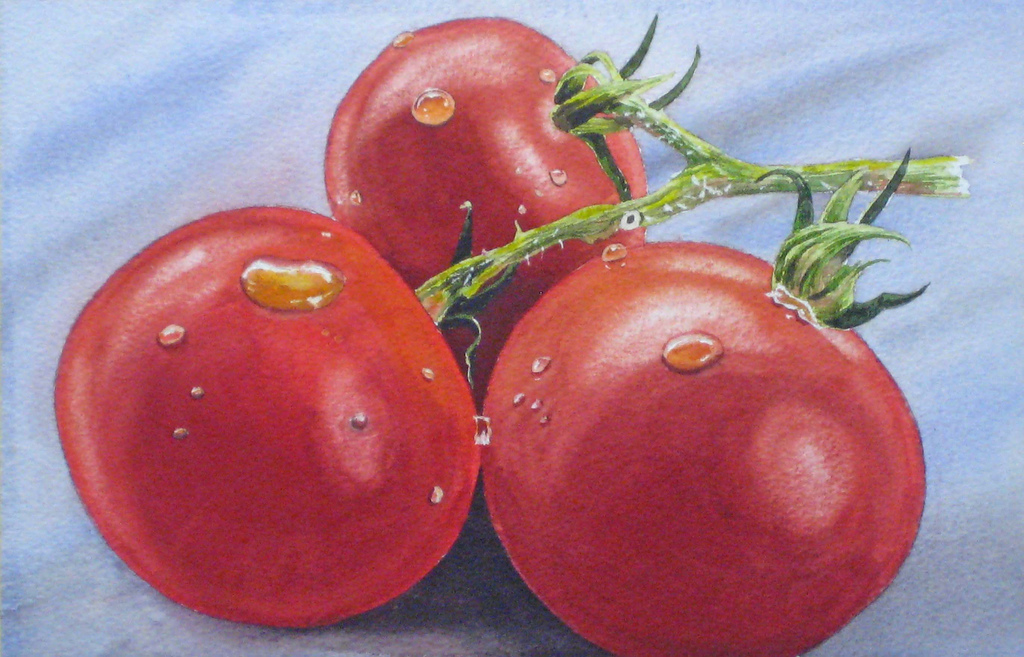 watercolor tomatoes final