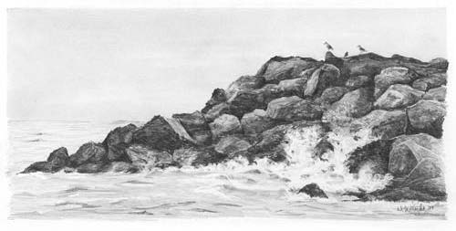 draw seascape pencil 7