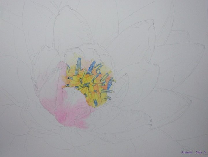 watercolor flower painting lessons