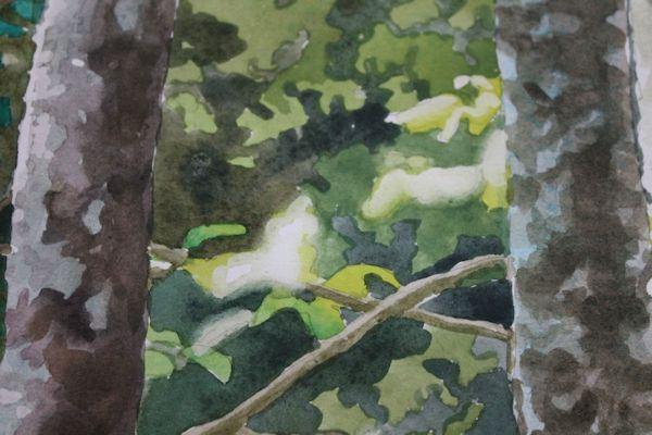 watercolor-paint-lessons-10