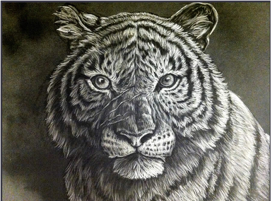 painting-a-tiger-6