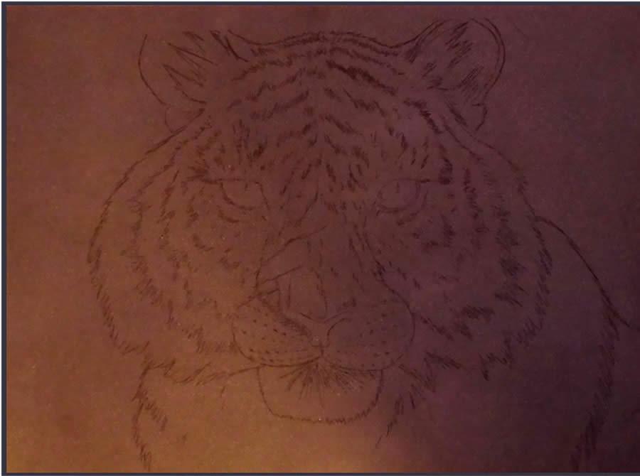 tiger pastels 2