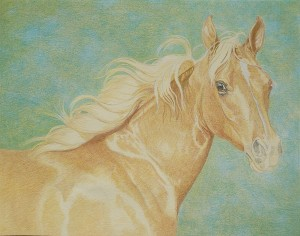 lewis-carrie-palomino-filly-12