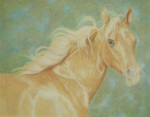 lewis-carrie-palomino-filly-13