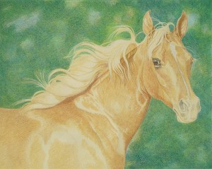 lewis-carrie-palomino-filly-16