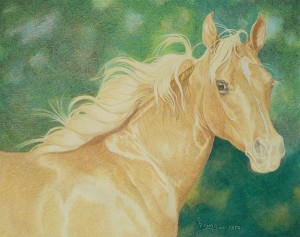 lewis-carrie-palomino-filly-17