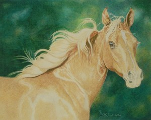 lewis-carrie-palomino-filly-19