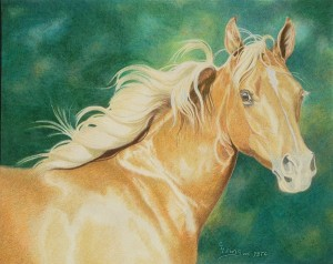 lewis-carrie-palomino-filly-23