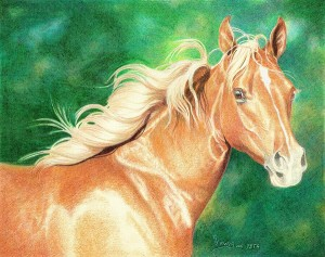 lewis-carrie-palomino-filly-25