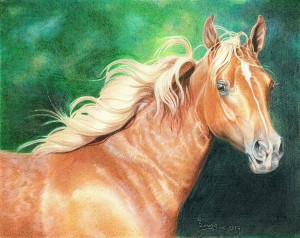 lewis-carrie-palomino-filly-31
