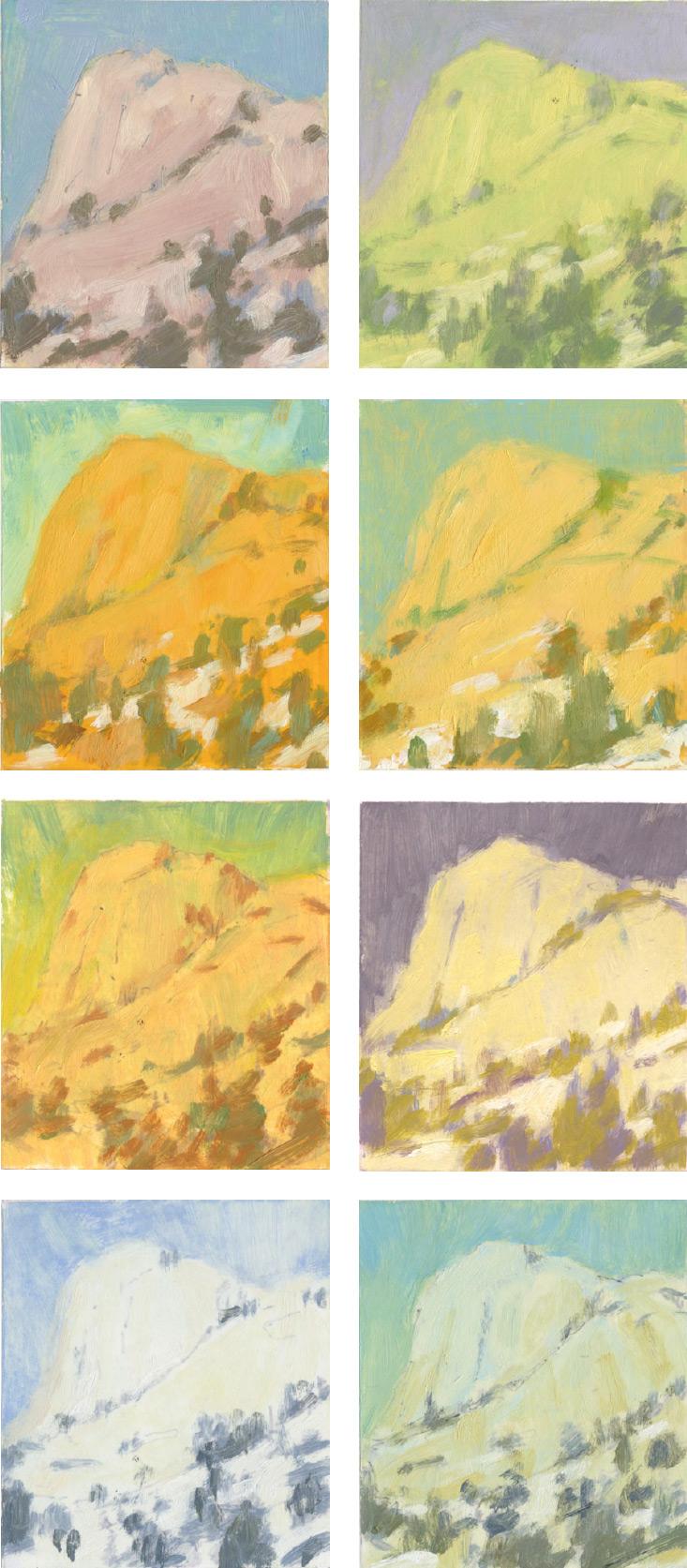 albala-simple-color-study